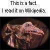 cyrano: (Wikipedia)