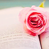 serpentine: a book with a pink rose on it (Writing - Rose on book)