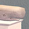 potpie_sims: (whale)