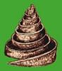 a_spiral_path: Spiral tower (pic#5229753)