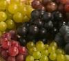 nata_vzhes: (виноградинки)