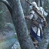 wolfhunt: (in da treeeeeees)