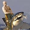 russkipidar: (on a motherfuckin' shark)