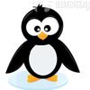 flightlessbirds: penguin (penguin)