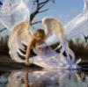 k_larabell: (ангел)
