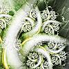 vulcanelf: (leaf fractal)