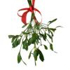 heaaarts: (mistletoe)