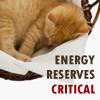 sarahq: (energy reserves)