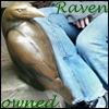taennyn: (owned by ravens)