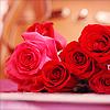 imagineireann: (Roses)
