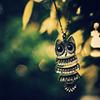 astro_noms: (cute owl)