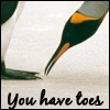 bardic_lady: (penguins - you have toes)