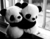 hikarun: (pandas)