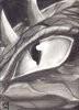 stormiestl: (Dragon Eye)