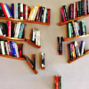 alexseanchai: bookshelves meant to look fally-downy (books 2)