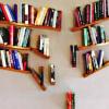 alexseanchai: bookshelves meant to look fally-downy (books 2)