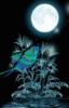 starlight_dreamer: (Default)