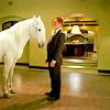 storybrooke: (white horse.)