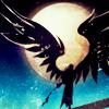 thefinaljudge: (wings)