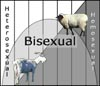 xtina: A chart with heterosexual/sheep on one side, homosexual/goat on the other, and BISEXUAL right in the middle. Via Kinsey. (bisexual)