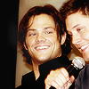 ext_19627: (♥ spn_j2 | he's got the best laugh there)