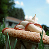 themeletor: close-up of a cupcake in the grass against a blue sky (tiny angry tattooed vegan mascot)