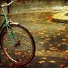 helga_weiss: (велоосень)