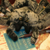 spoke: spider with a pen on a book (delicious books!, spider)