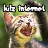 "supertights: Image of a kitten with mouth open like it's laughing and the words ""lulz internet"" above (Lulz, Internet)"