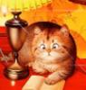 lenarudenko: (кот читает)