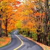 chokolattejedi: A blacktop road winding through trees with fall-colored leaves (Gen - Fall Leaves)