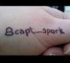 capt_spork: (capt_spork)