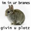 misslucyjane: (plot bunny)