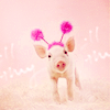 without_wings: ((art) Pig playing dress up)