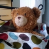 freddiefraggles: my teddie bear. (william)