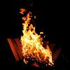 beowabbit: (Misc: BiCamp campfire)