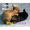 beowabbit: (Sex: Important Wabbit Business)