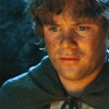uluithiad: (samwise the nonplussed)