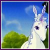 jookitcz: (the last unicorn)