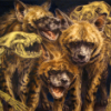 death_gone_mad: A group of striped hyenas and hyena skeletons (hyena group)