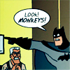 wenelda: (Batman - monkeys!)