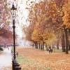 wenelda: (London - hyde park)