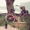 acidsundays: (bike)