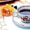 fujiko: (tea and rose)