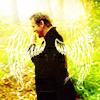 tryingitall: (wingies)