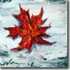 aridni: (maple leaf)