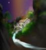 flynn_the_cat: Painting of Imladris, Rivendell, Last Homely House (Imladris)