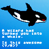 biichan: (misc: is this awesome? (whale))