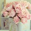 aizen: (pink roses)