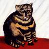 """perihadion: (""""The Tiger Cat"""")"""